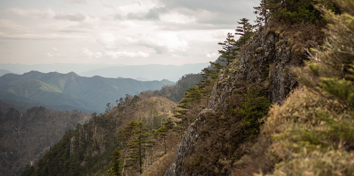 Koya Bound — Eight Days on Japan's Kumano Kodo